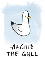 Archie the Gull illustration